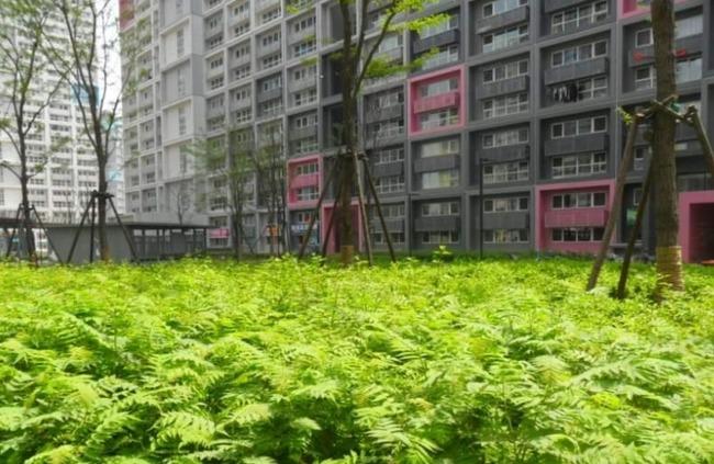 推推99北京房产网中弘北京像素出租房房源图片