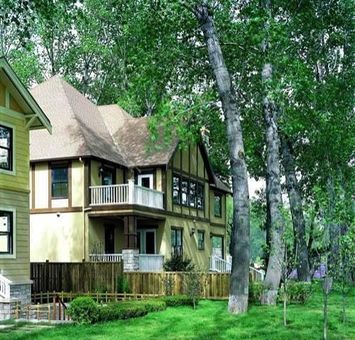 温哥华独栋风格514平米985万随时看房造型设计别墅别墅重庆图片