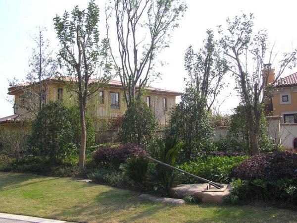王府花园房源图片