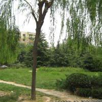 北京月坛南街外景图