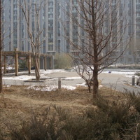 推推99北京房产网阅园二区外景图