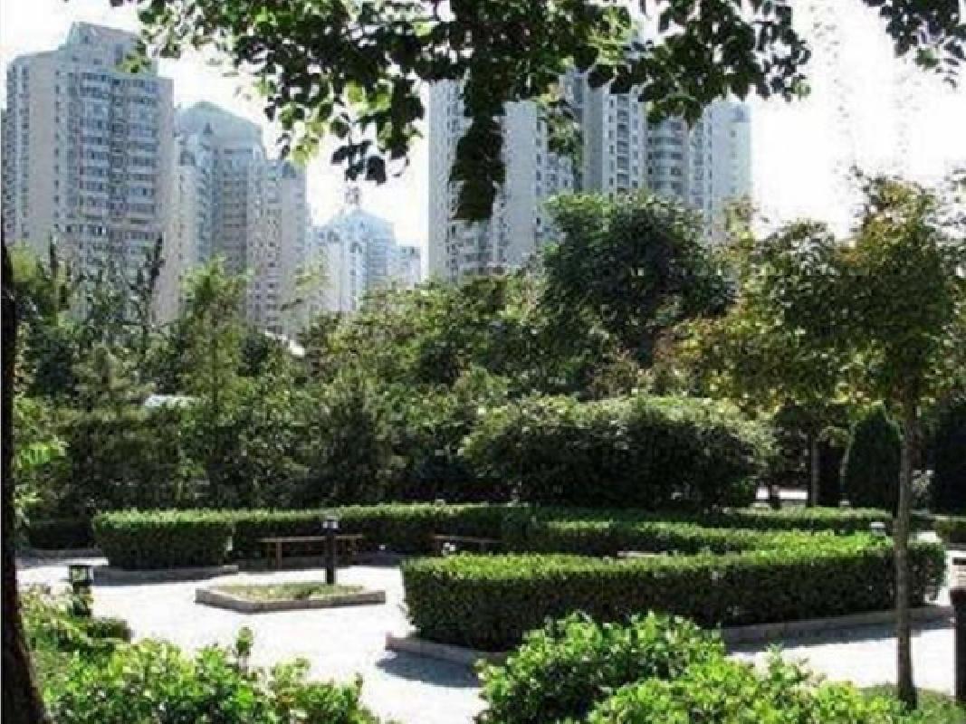 推推99北京房产网望京新城出租房房源图片