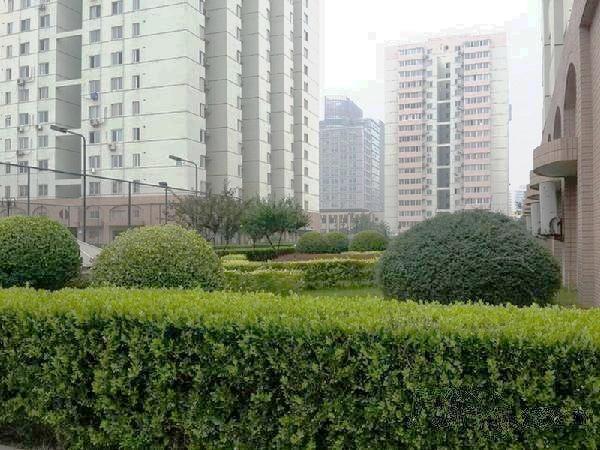 北京三里河一区3号院外景图