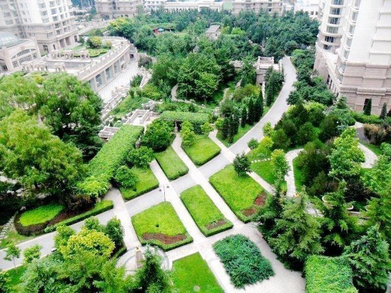 推推99北京房产网棕榈泉国际公寓出租房房源图片